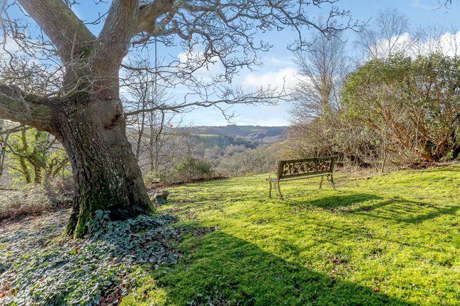 Garden of Trusham, Newton Abbot, Devon TQ13