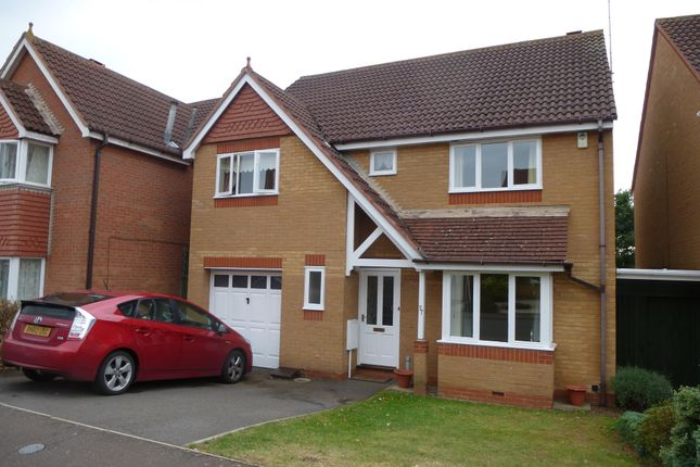 Thumbnail Property to rent in Chandlers, Orton Brimbles, Peterborough