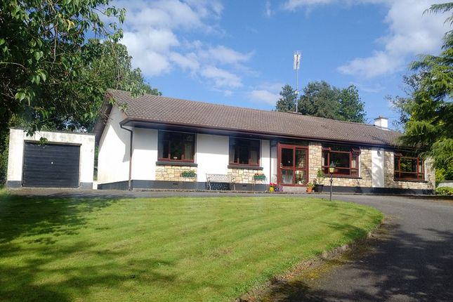 Thumbnail Bungalow for sale in Lugnagon, Newtowngore, Leitrim