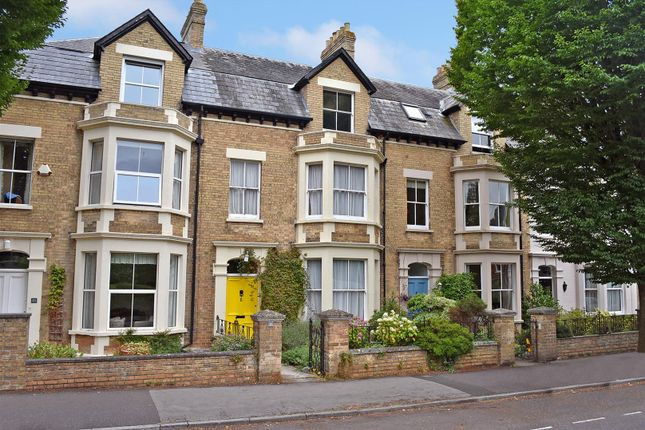 Thumbnail Terraced house for sale in The Avenue, Taunton