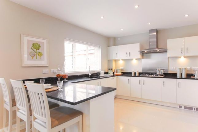"Thumbnail Detached house for sale in ""Crompton"" at Wyaston Road, Ashbourne"