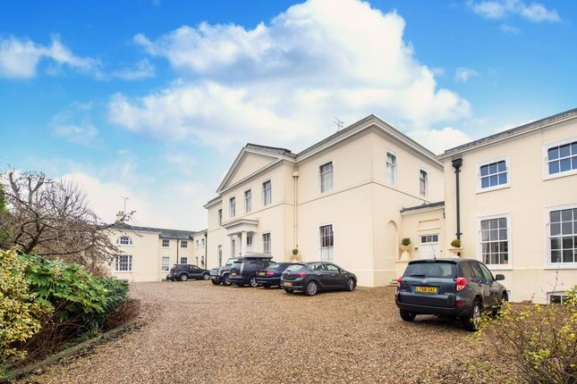 Thumbnail Property to rent in Monks Rise, Welwyn Garden City