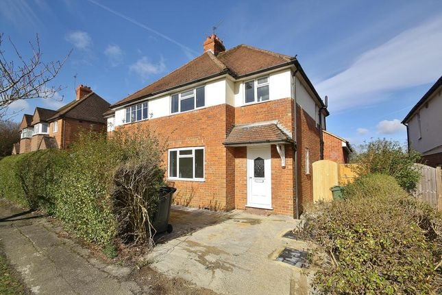 Thumbnail Semi-detached house to rent in Ashenden Road, Guildford, Surrey