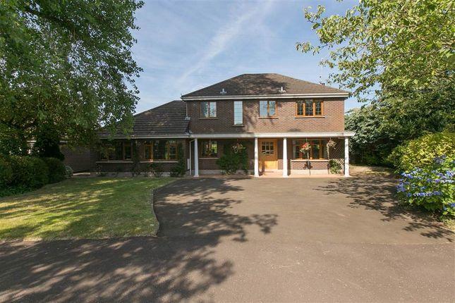 Thumbnail Detached house for sale in 3, Viewfort Park, Belfast