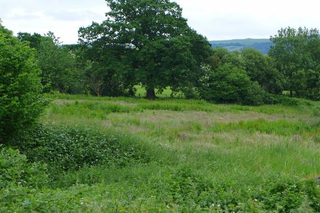 Thumbnail Land for sale in Capel Bangor, Aberystwyth, Ceredigion
