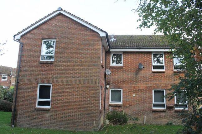 Studio for sale in Markham Road, Capel, Dorking RH5