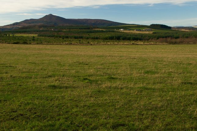 Thumbnail Land for sale in Inverurie, Aberdeenshire