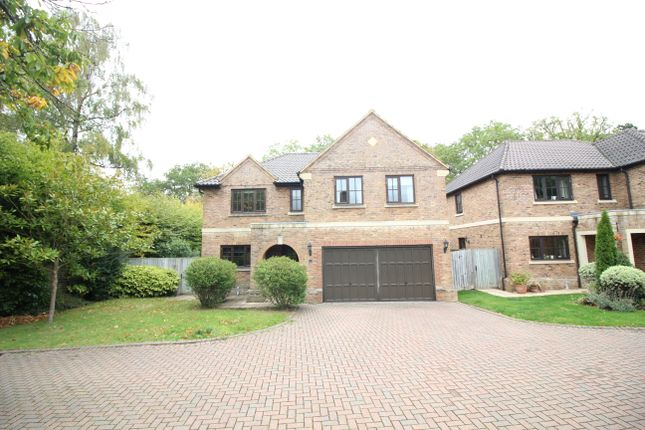 Thumbnail Detached house to rent in Ryelaw Road, Church Crookham, Fleet
