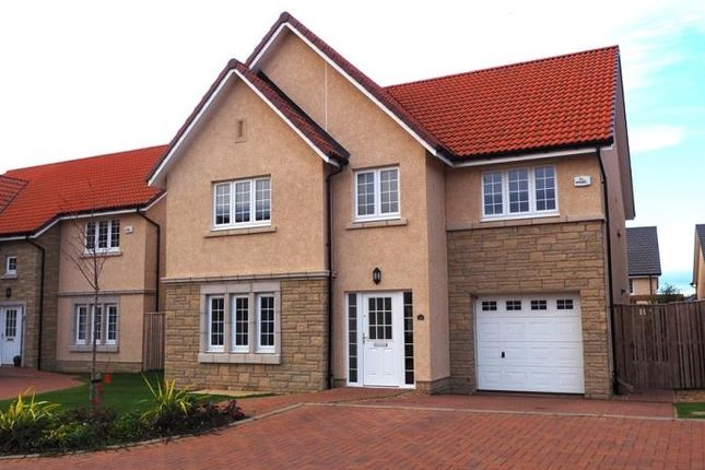 Thumbnail Detached house to rent in Moffat Place, North Berwick