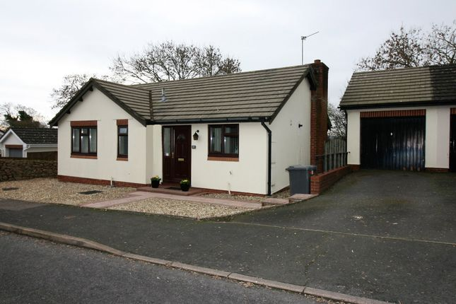 Thumbnail Detached bungalow for sale in Steed Close, Paignton