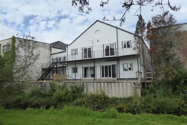 Thumbnail Flat to rent in Riverside Court, Millmount, New Castletown Road