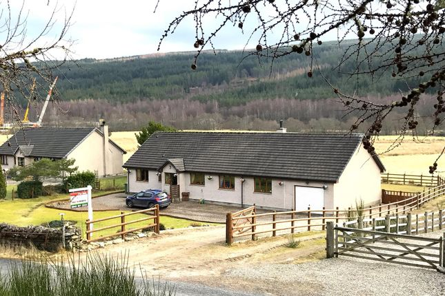 Thumbnail Bungalow for sale in Glenmoriston, Inverness