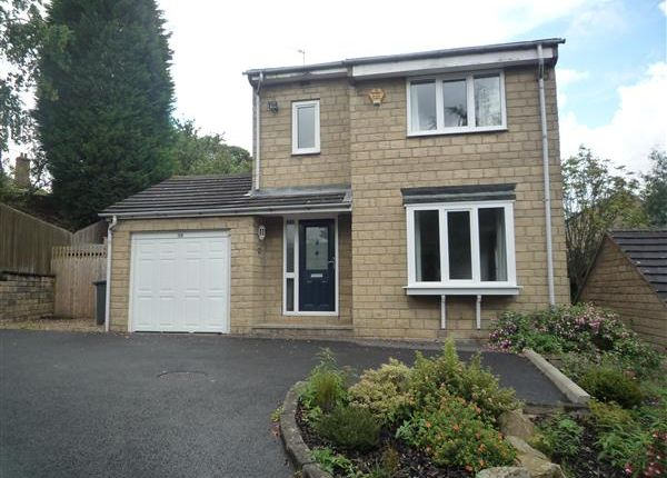 Thumbnail Detached house to rent in Wood View, Birkby, Huddersfield