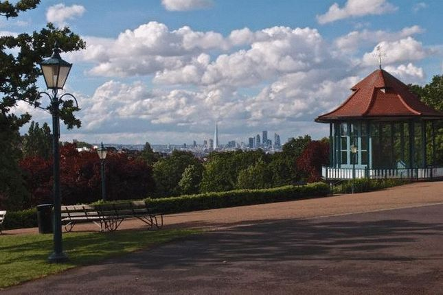 City View From Horniman