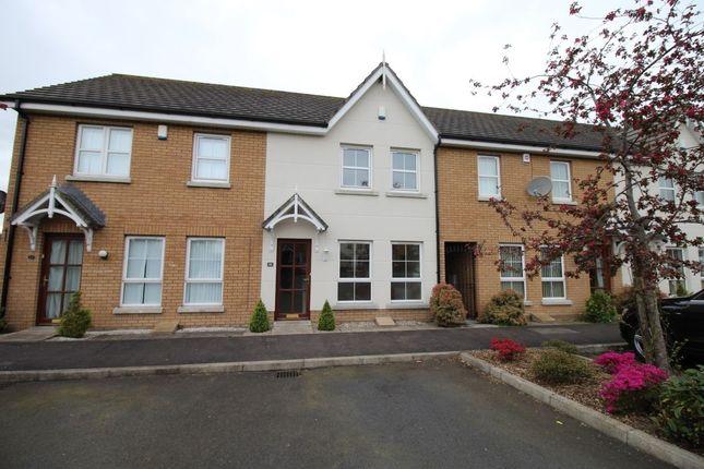 Thumbnail Terraced house to rent in Mornington Walk, Lisburn