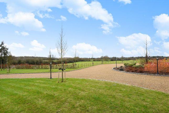 Garden of Winkfield, Berkshire SL4