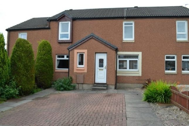 Thumbnail Terraced house to rent in Franchi Drive, Stenhousemuir, Larbert