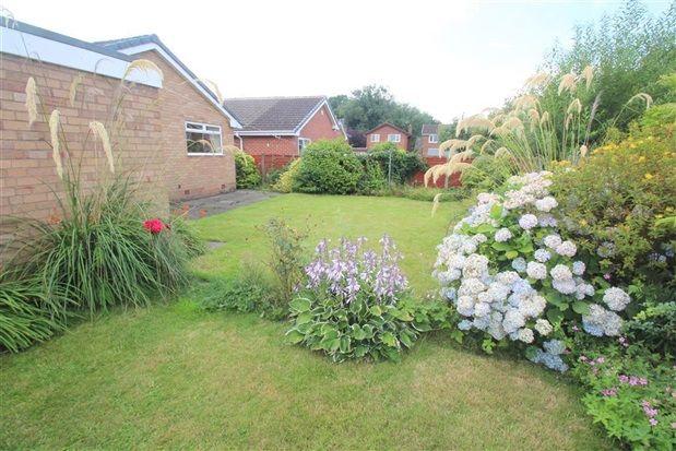 Rear Gardens of Wyresdale Drive, Leyland PR25