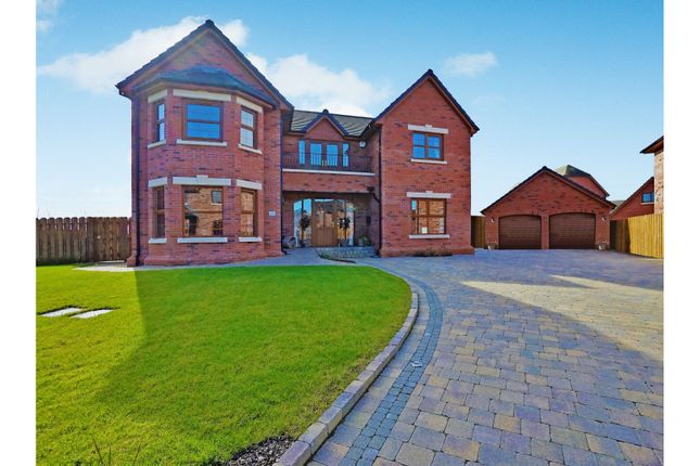 Thumbnail Detached house for sale in Ballycrochan Park, Bangor