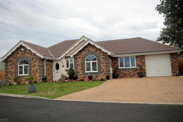 Thumbnail Bungalow for sale in Nightingale Way, Clacton-On-Sea