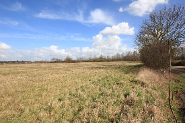 Land for sale in Goose Lane, Little Hallinbury