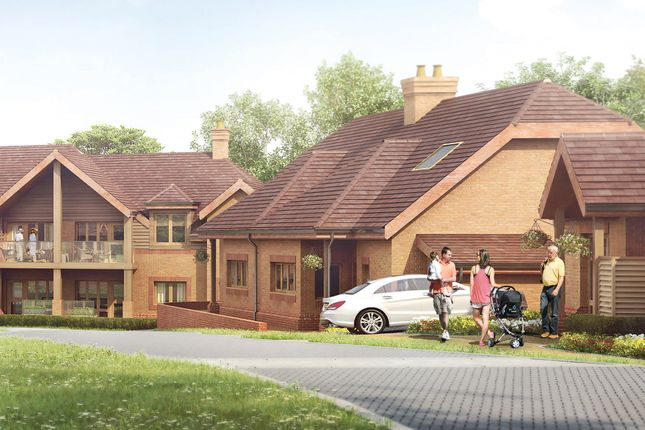 Thumbnail Bungalow for sale in Cartwright Drive, Titchfield, Fareham