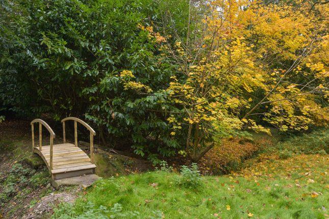 Image of Mearse Lane, Barnt Green, Birmingham B45