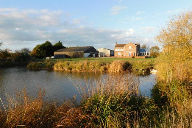 Thumbnail Detached house for sale in Billgate Lane, Burgh Le Marsh, Skegness