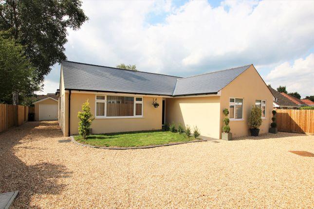 Thumbnail Detached bungalow for sale in Woolsbridge Road, St Leonards, Ringwood