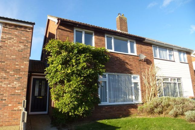 Thumbnail Property to rent in Sparrow Road, Great Cornard, Sudbury