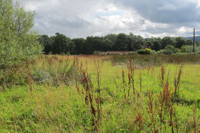 Thumbnail Land for sale in Bonchester Bridge, Hawick
