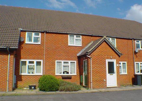 Thumbnail Terraced house to rent in St. Andrews Road, Whitehill, Bordon