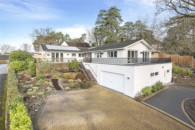 Thumbnail Bungalow to rent in Oriel Hill, Camberley