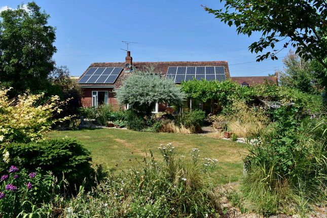 Thumbnail Detached bungalow for sale in Sidbrook, West Monkton, Taunton