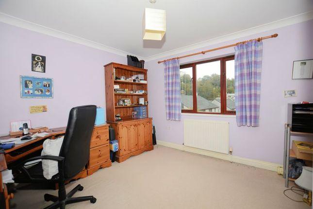 Bed 3 of Cole Moore Meadow, Tavistock PL19