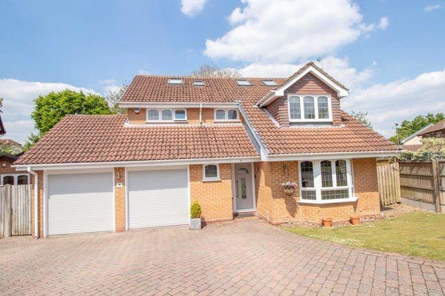 Thumbnail Detached house for sale in Petrel Croft, Basingstoke