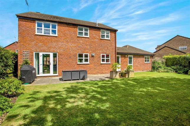 Thumbnail Detached house for sale in Drayhorse Road, Ramsey, Huntingdon