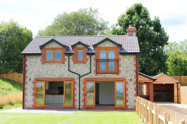 Thumbnail Detached house for sale in Hare Lane, Buckland St Mary, Somerset