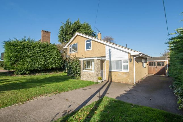 Thumbnail Detached house to rent in Northbourne Road, Great Mongeham