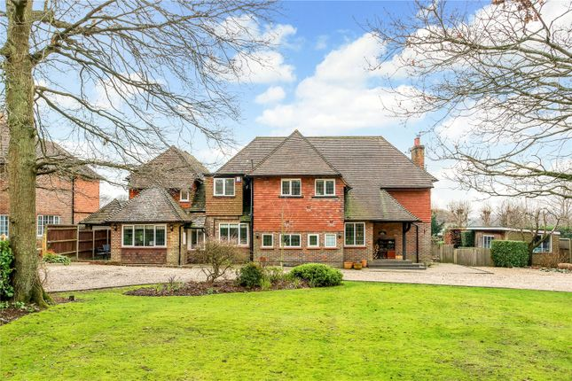 Thumbnail Detached house for sale in Wanborough Lane, Cranleigh, Surrey
