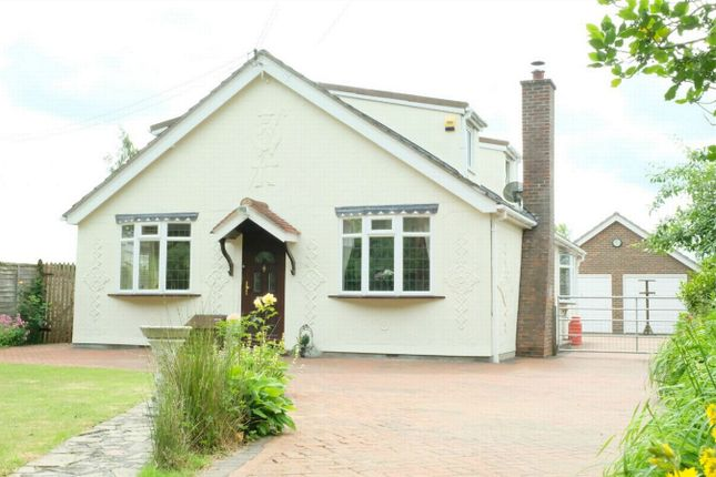 Thumbnail Detached bungalow for sale in Grange Road, Tiptree, Essex