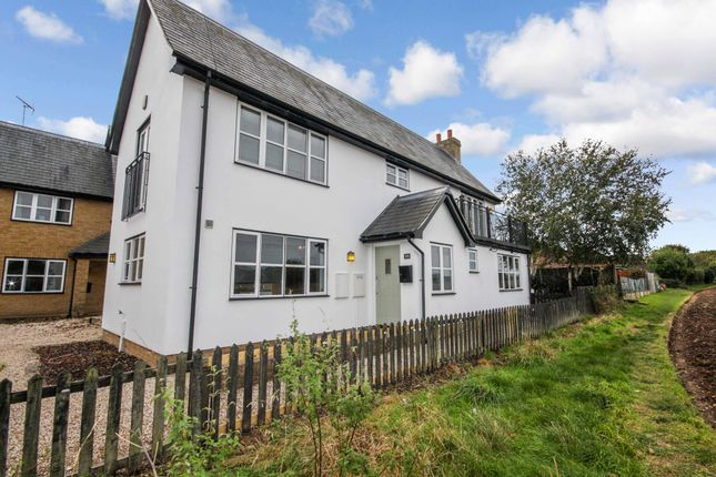 3 bed semi-detached house to rent in Main Road, Broomfield, Chelmsford CM1