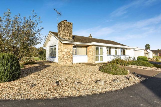 Thumbnail Detached bungalow for sale in Silbury Road, Calne, Wiltshire