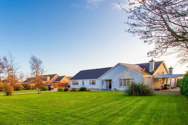 Thumbnail Property for sale in Lomond Road, Limavady