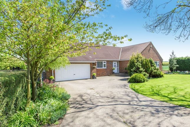 Thumbnail Bungalow for sale in Halsham, Hull
