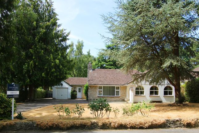 Thumbnail Bungalow for sale in St Ives Park, Ashley Heath, Ringwood