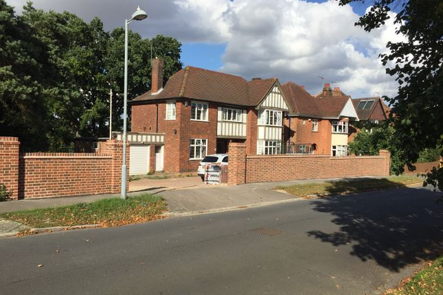 Thumbnail Detached house for sale in Elsmere Road, Ipswich