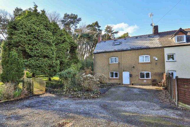 Thumbnail Cottage for sale in Lighthouse Road, St. Brides Wentlooge, Newport