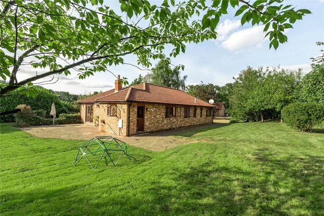 Thumbnail Bungalow for sale in Featherbed Lane, Warlingham