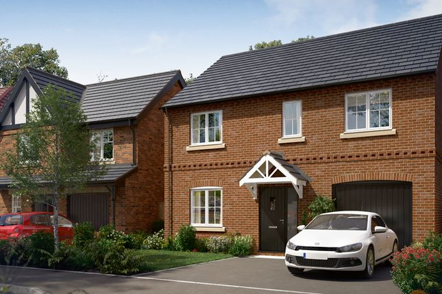 "Thumbnail Detached house for sale in ""The Rosebury"" at Wingfield Road, Alfreton"